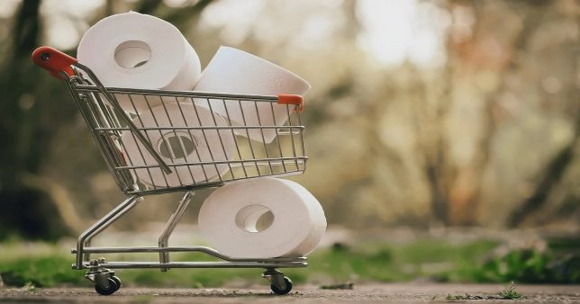 Image of a shopping cart loaded with toilet paper represening fast moving consumer goods the theme dominant among eight sectoral (thematic) mutual fund outperformers