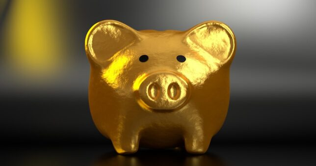 Image of a golden piggy bank representing the value of PPF and the need to understand facts about maturity preclosure and nomination mentioned in this article